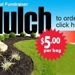 Mulch $5 per bag